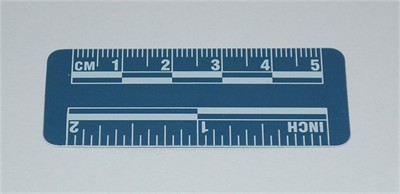 Photo Evidence Scale - Blue 50mm/2""