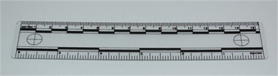 Photo Evidence Scale - Transparent 150mm/6""