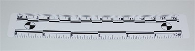 Photo Evidence Scale - White 150mm/6""