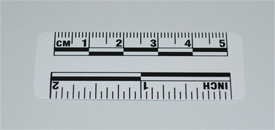Photo Evidence Scale - White 50mm/2""