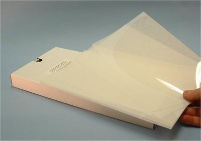 Acetate Sheets Footprint 13x7 -100pk-