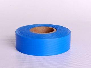 Boundary Tape - Blue